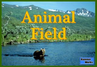 AnimalField_Box.png